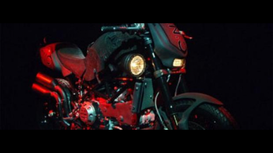 Ducati Monster Black Dogo