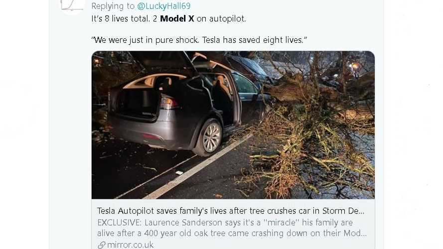 Tesla Safety Tech Saves 2 Families From Being Crushed By Massive Tree