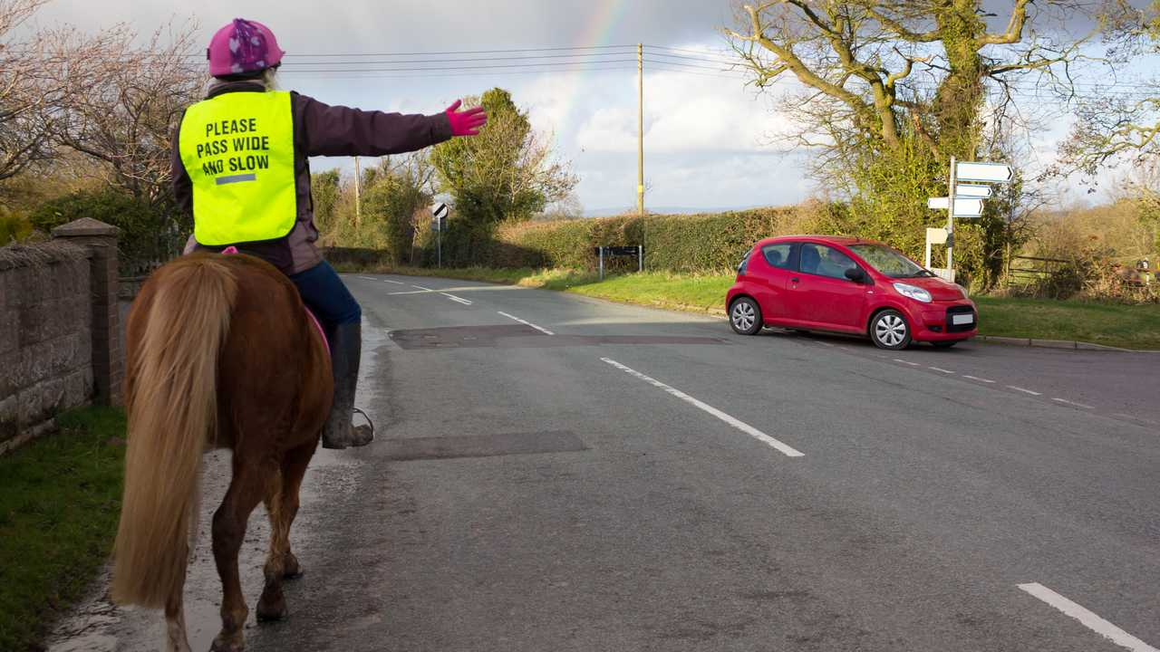 Riding road safety as young girl on pony indicates to car that she is about to turn across the road