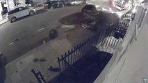 yol kenarinda luks otomobiller kaza
