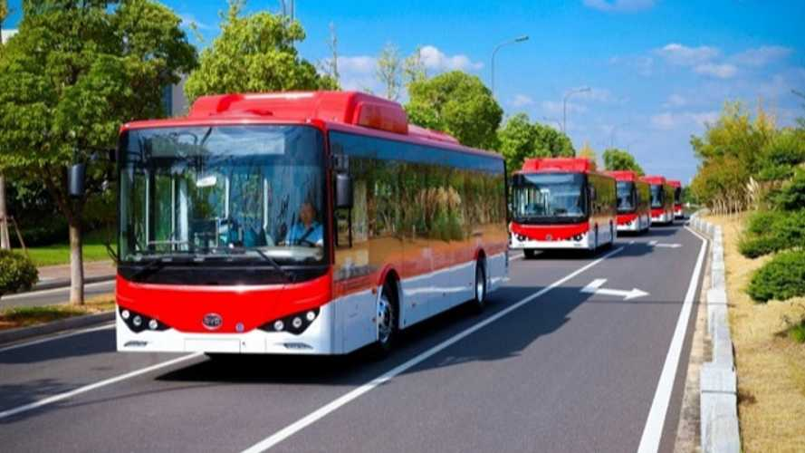Chilean Capital Of Santiago Ordered 183 More BYD EV Buses