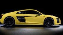 Audi partial matting