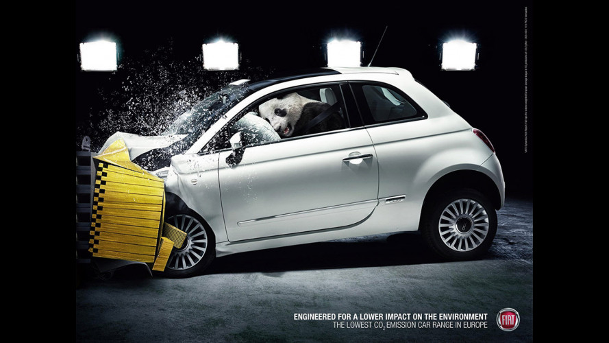 I Crash Test di Fiat sugli animali
