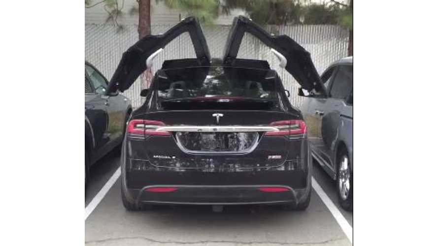 Tesla Model X Falcon Door Operation In Real Time - Video