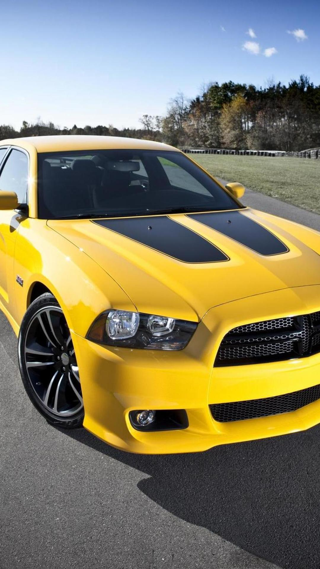 2012 dodge challenger srt8 yellow jacket and charger srt8
