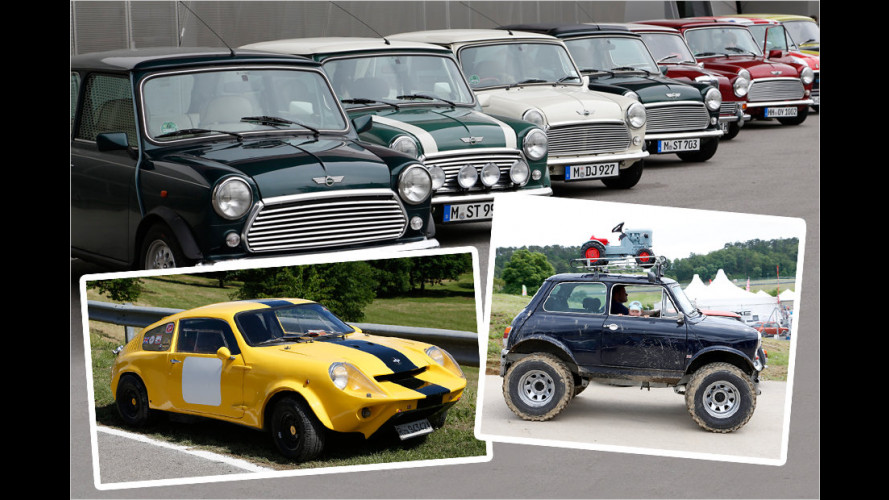 Die schönsten Bilder vom International Mini Meeting 2013
