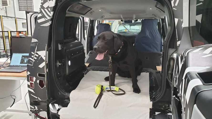 Jaguar Land Rover testet Hundetauglichkeit mit Spezial-Pfote