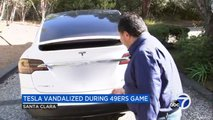 This 49ers Supporter Can't Stand A Tesla, Kicks Its Back Door