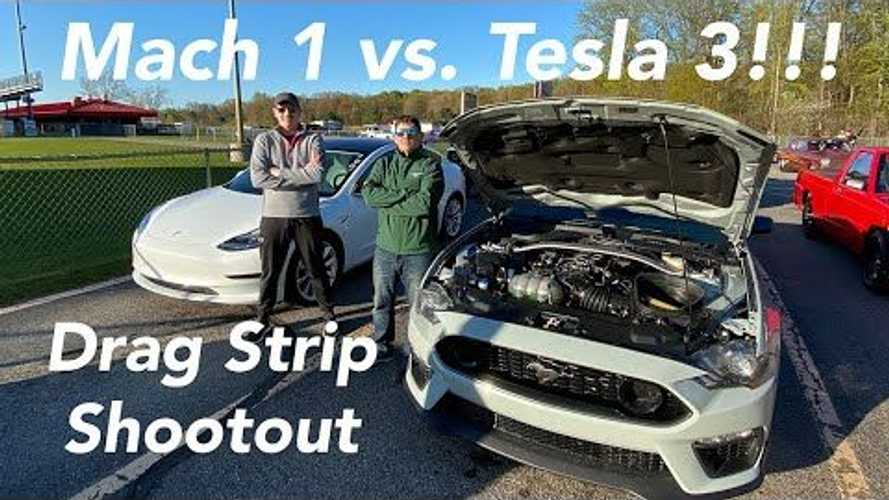 Ford Mustang Mach 1 Vs Tesla Model 3 Drag Race: Running 11s?