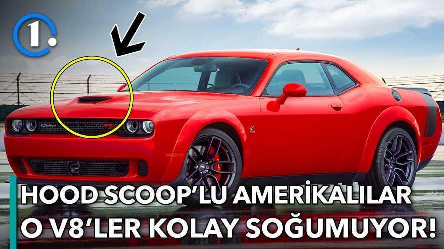 Hood Scoop kullanan 10 Amerikalı | Bilgin Olsun