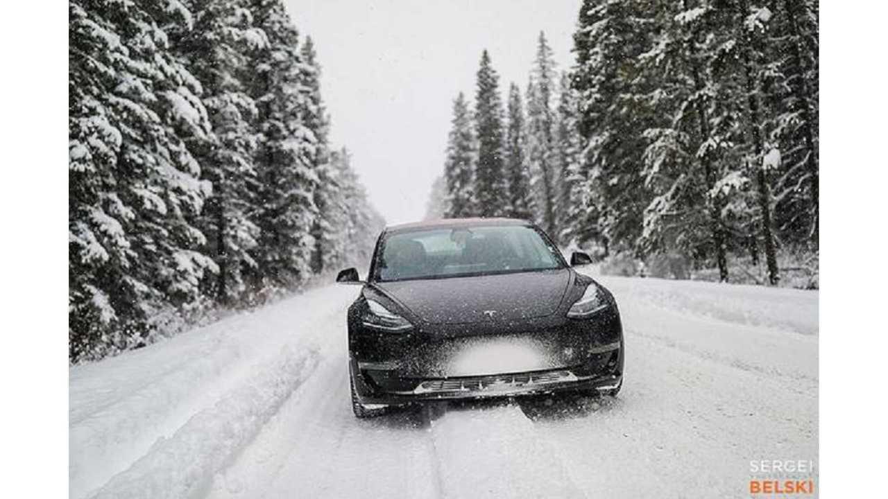 February 2019 U.S. EV Sales Low: Tesla Model 3 Saves With Dominance