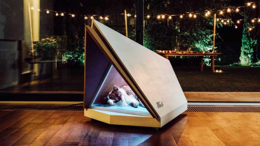 Ford cria casinha anti-ruídos para cachorros com tecnologia dos carros