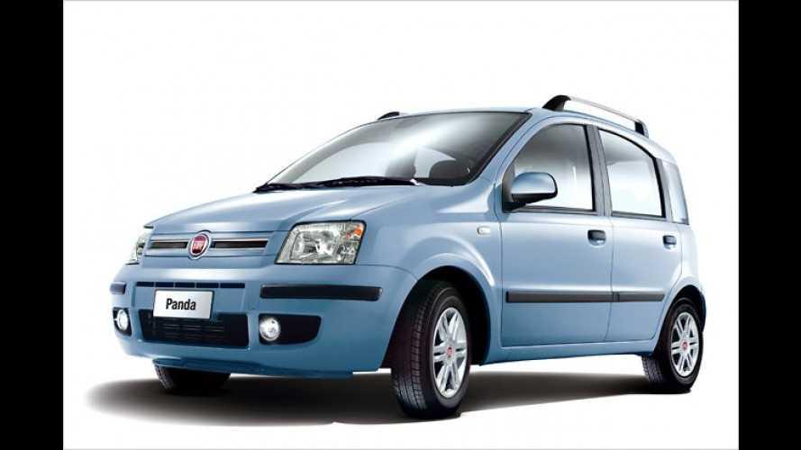 Fiat-Sondermodelle: Panda MyLife für unter 7.500 Euro