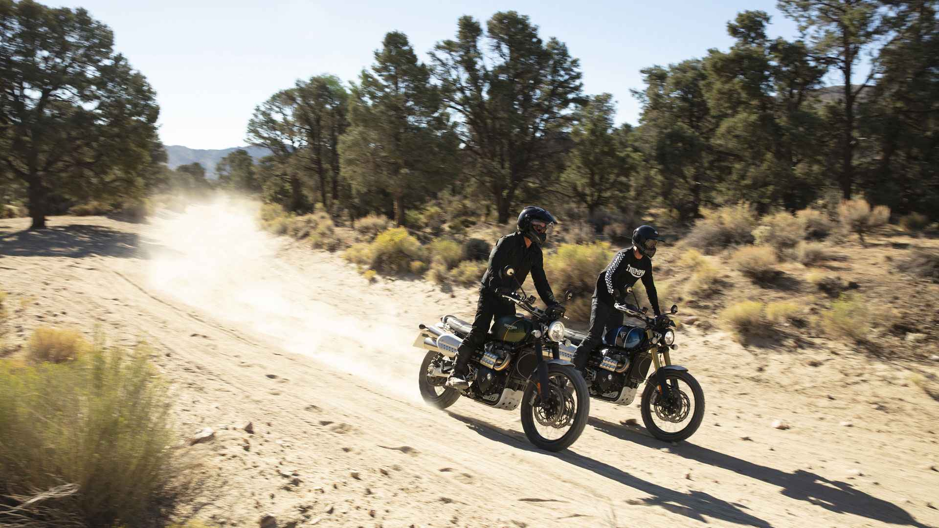 2019 Triumph Scrambler 1200 Everything We Know