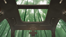 Bamboo could feature in your next car