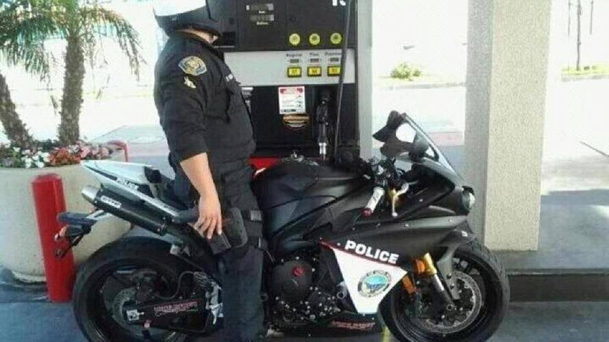 A cop, a squid or both?