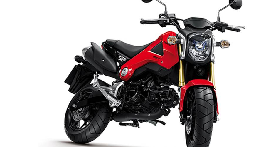 Honda MSX125: a sporty Wave