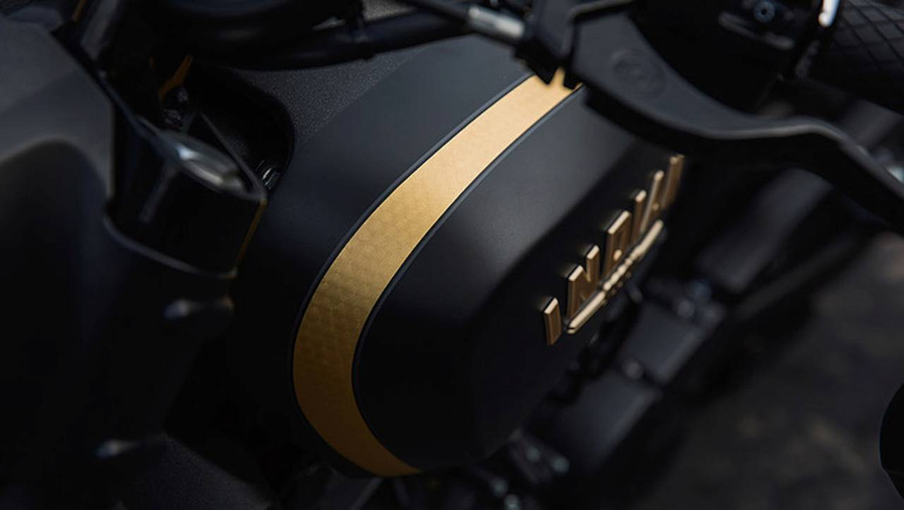 The gold pattern on the Jack Daniel's Scout Bobber's striping.
