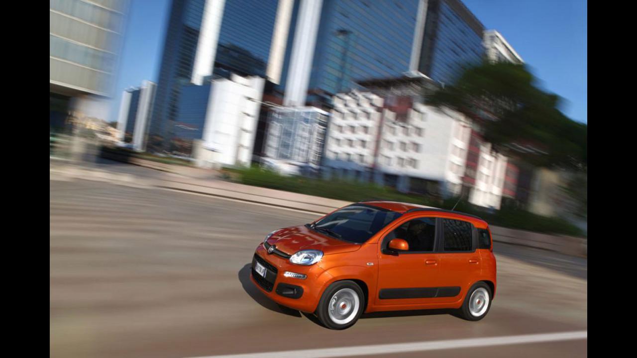 Fiat Panda, 500L e Punto sbarcano in Canada