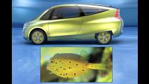 Bio-Benz im Fisch-Format