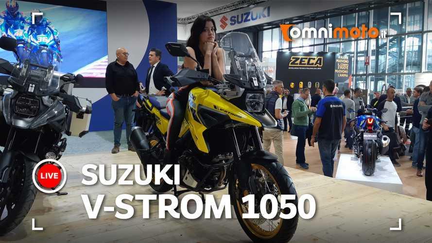 Suzuki V-Strom 1050, la tourer di Hamamatsu si evolve
