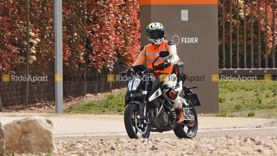 KTM 390 Duke Spy Shots