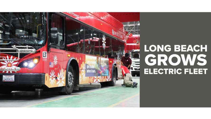 BYD Enjoys Solid Recurring Bus Orders In The U.S.