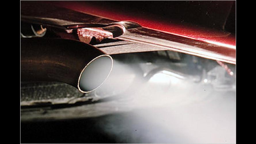 Dicke Luft im Auto: Vor der Urlaubsfahrt den Filter wechseln