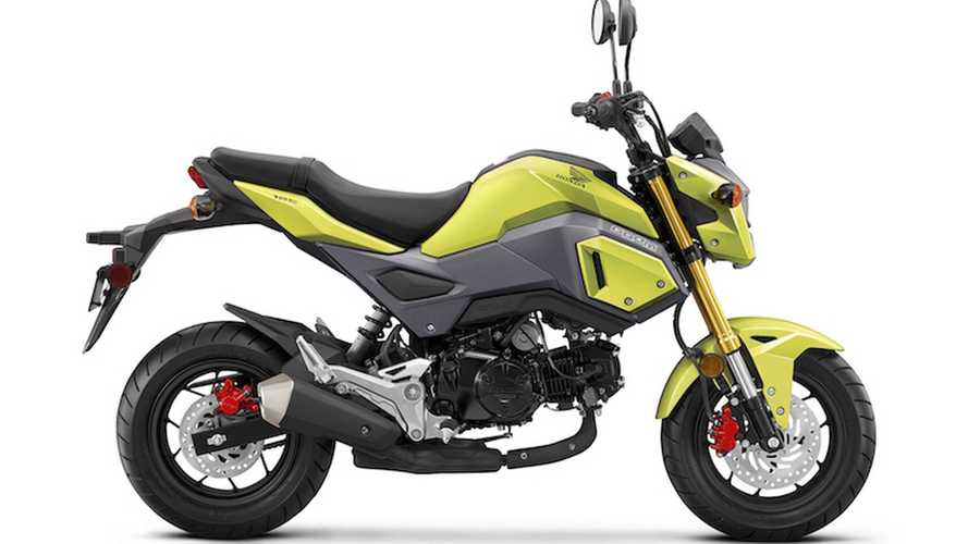 More Honda Rumors: The Grom Is Next On The Update List