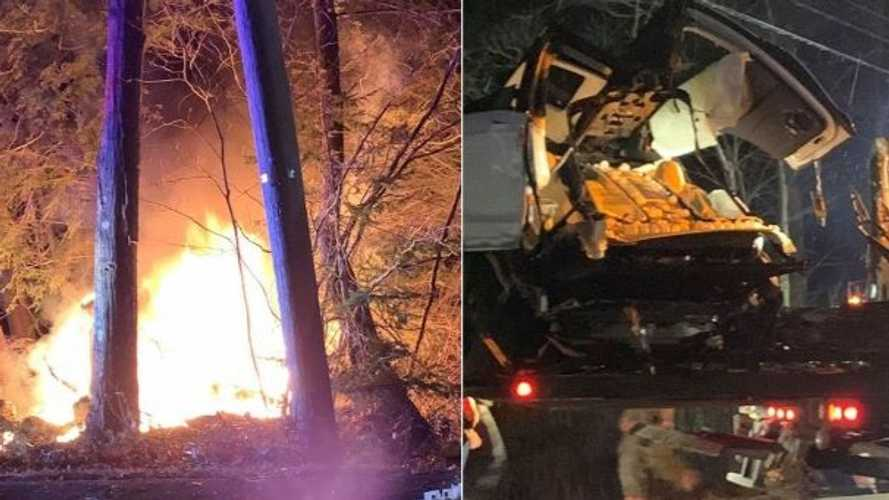 Tesla Model X Hits Tree, Splits In Two, Catches Fire