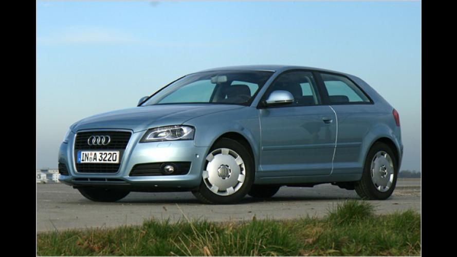 Die e-Klasse von Audi: Lohnt sich der A3 1.9 TDI e?