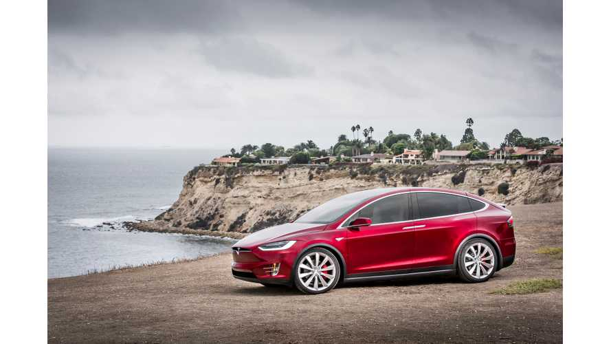 Tesla Model X 75D Long-Term Review After First 3 Months (Videos)