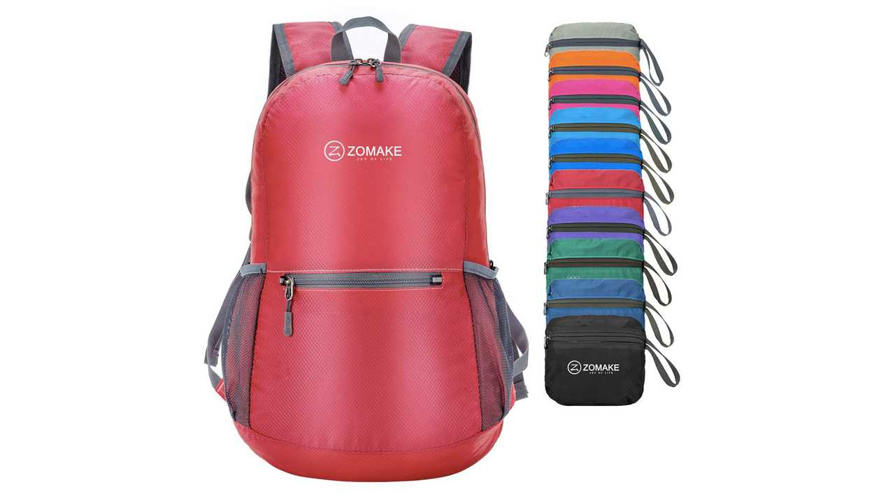 Packable Backpack - $15.99