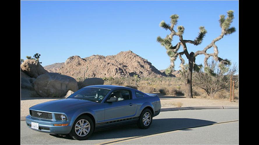 Ein milder Wilder: Ford Mustang V6 Coupé Deluxe im Test