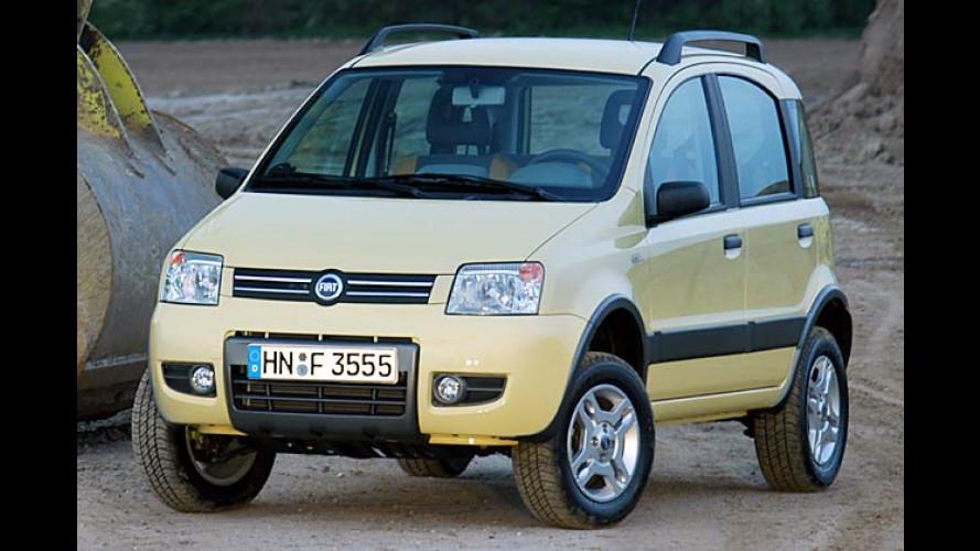 Fiat Panda 4x4: Allradversion ab 16. Oktober zu haben