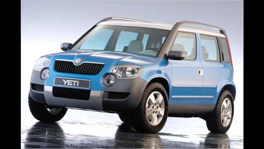 Entscheidung von Škoda: Der Yeti wird gebaut