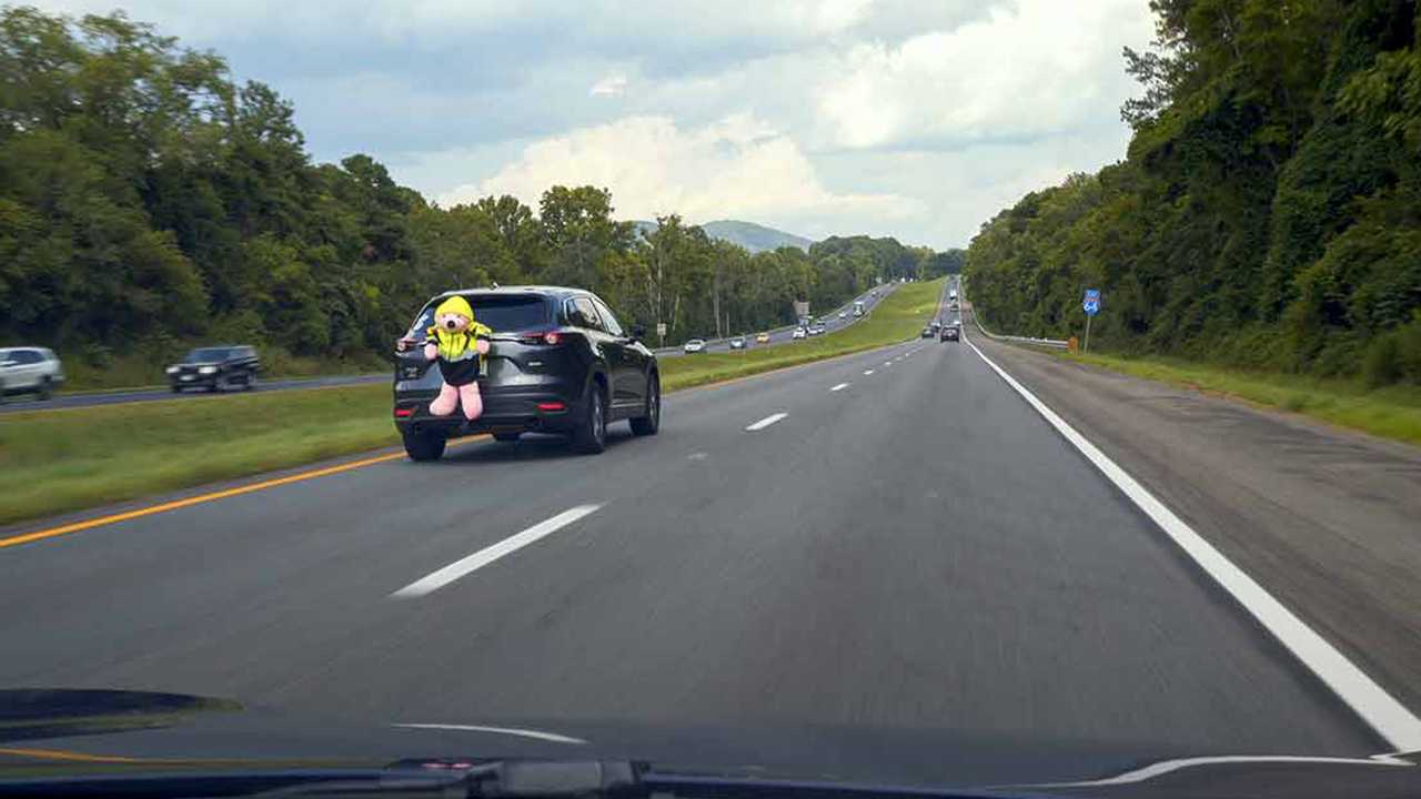 This IIHS study involving driver awareness included a pink bear strapped to the back of an SUV.