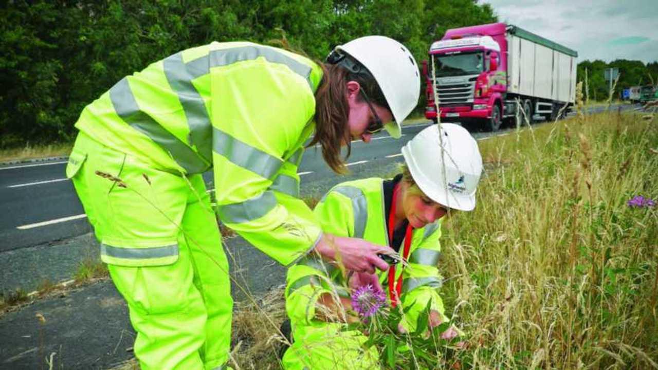 Highways England's Cumbrian roadside improvements