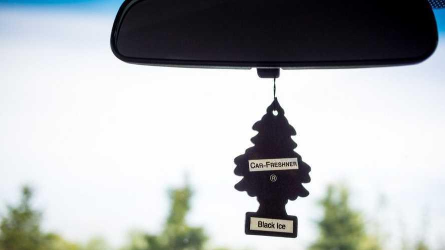 D'où vient le célèbre arbre magique ?