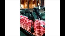 Leoparden-Mini in Wien
