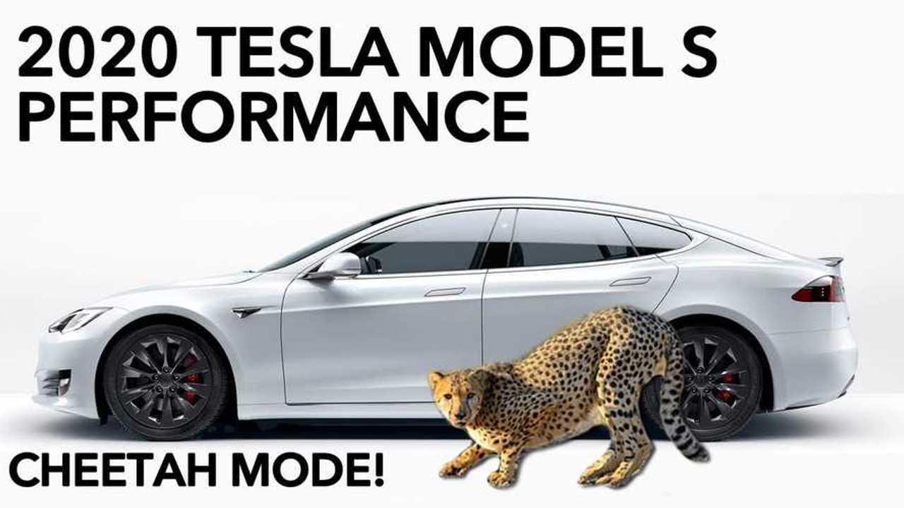 tesla model s cheetah stance