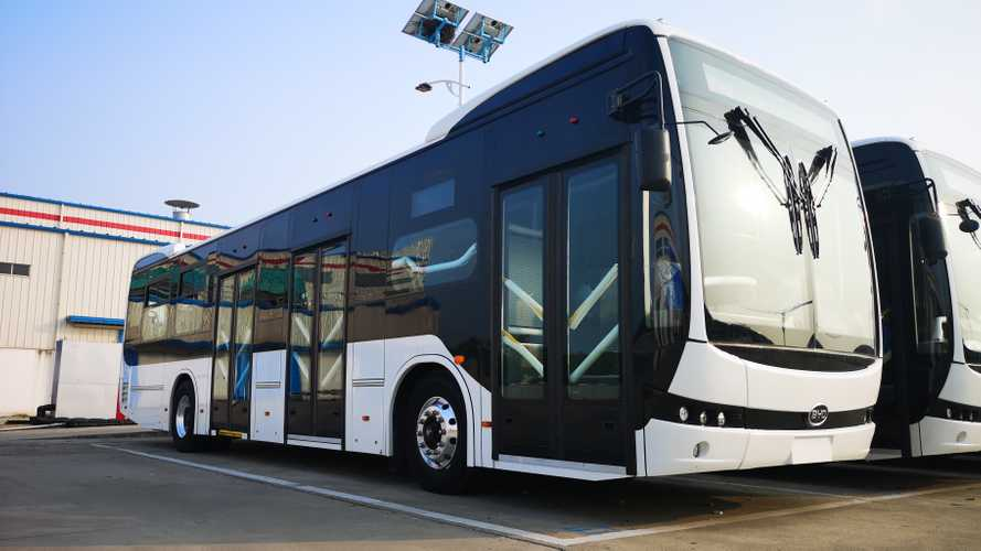 BYD Scored Latin America's Largest EV Bus Order: 379 Buses
