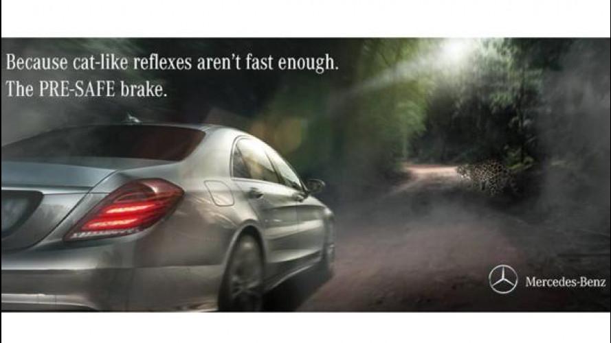 [Copertina] - Mercedes frena con Pre-Safe per non investire... il Giaguaro