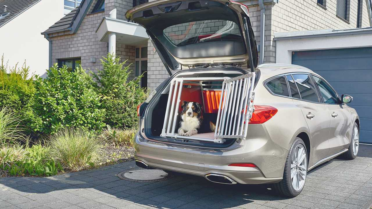 Ford Focus Dogbox 2019