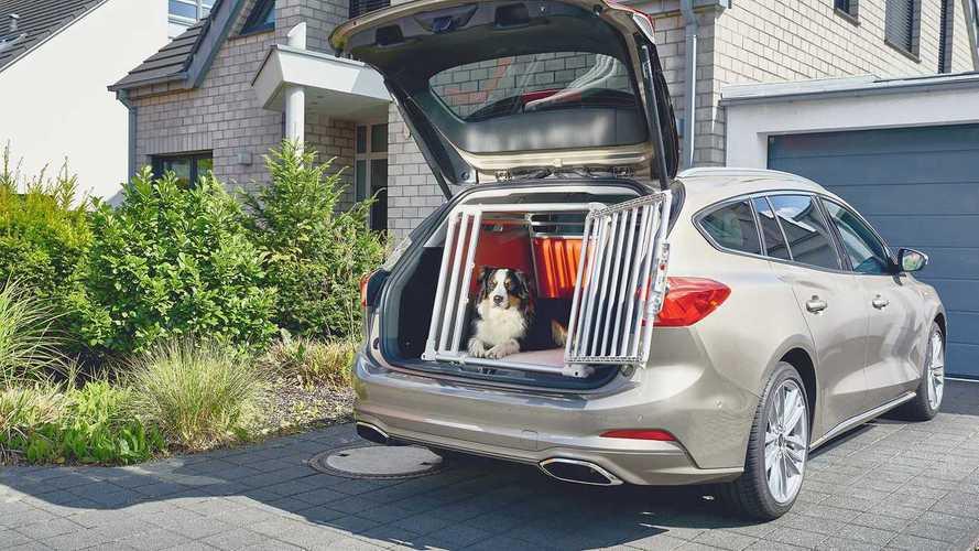 Das passende Auto für Hundebesitzer