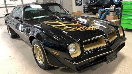 1976 pontiac trans am black special edition