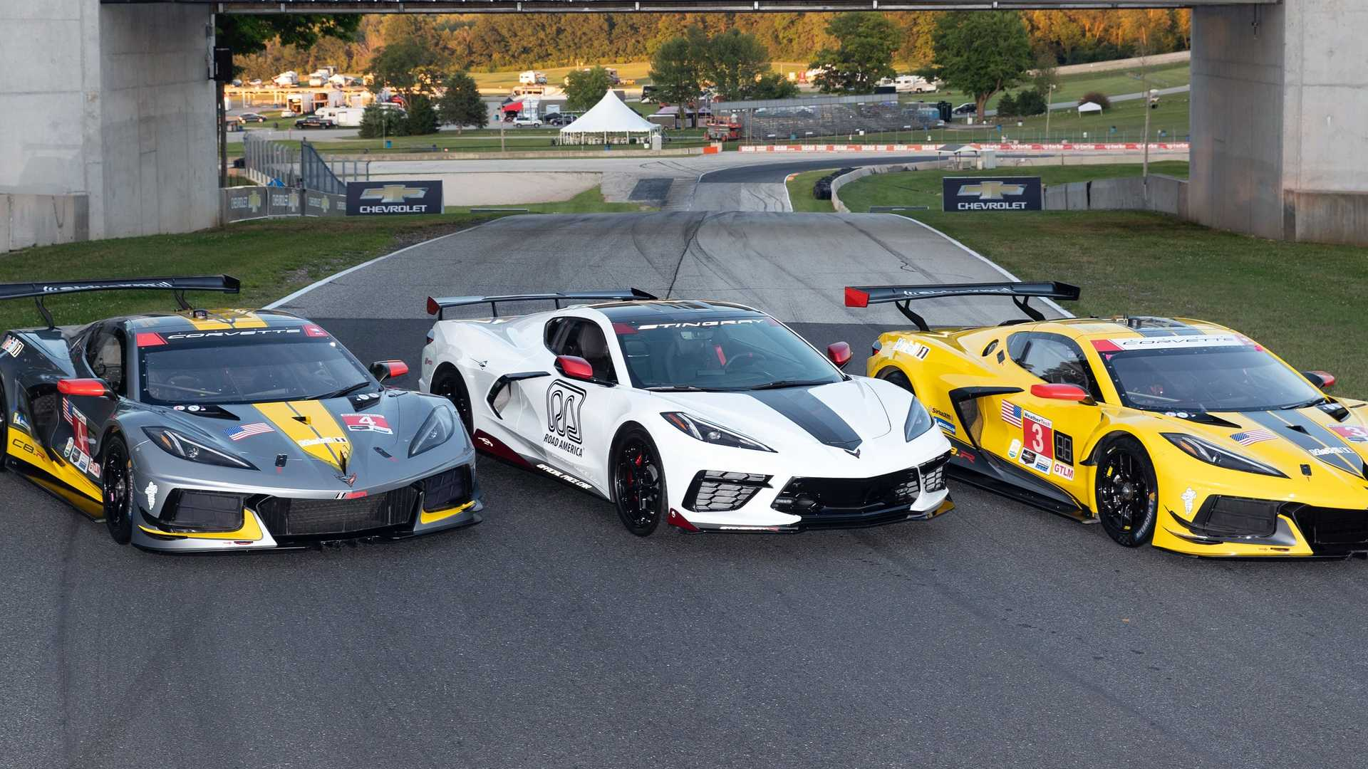 Did Corvette Racing Preview The 2021 C8 Stingray R Special Edition?
