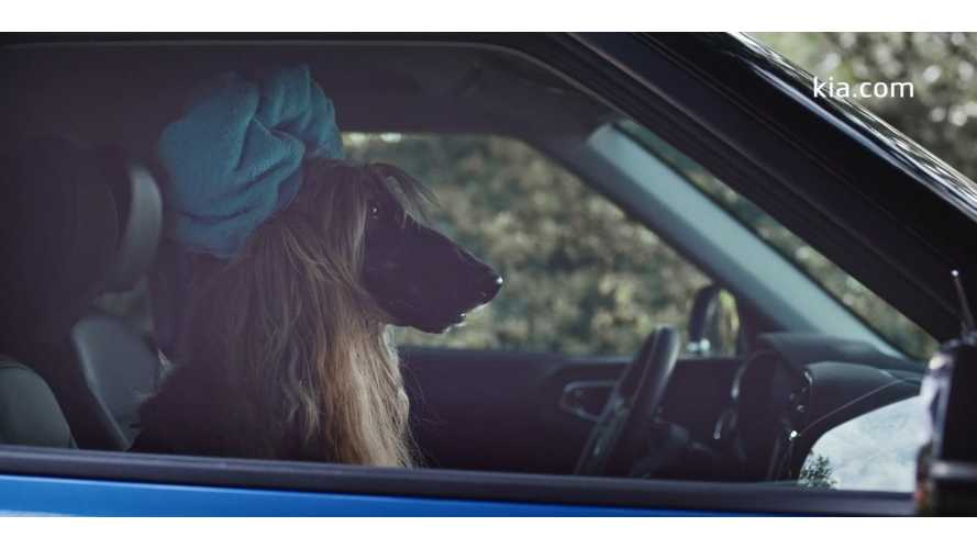 Kia e-Soul Drive Outside The Box Ad Features Stylin' Dog: Video