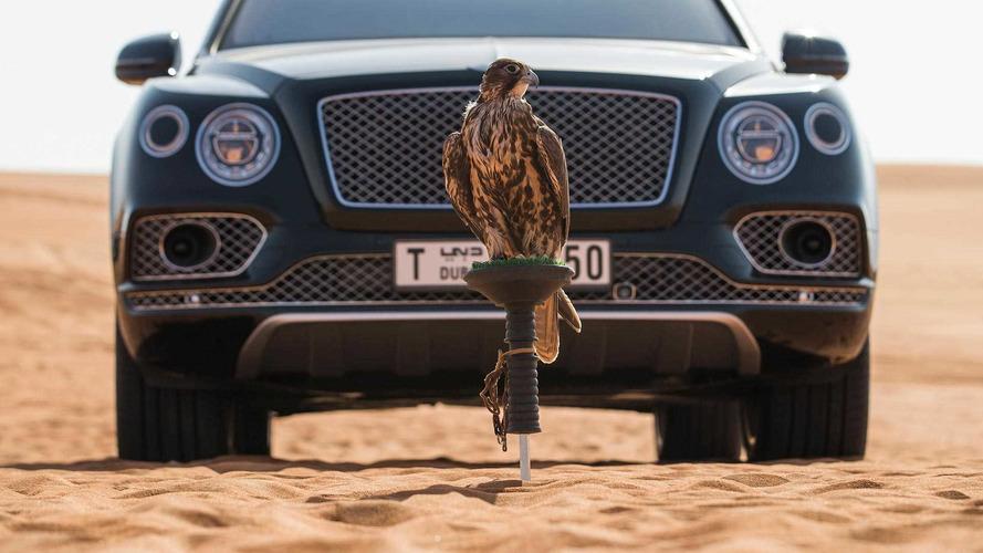 Fauconniers, ce Bentley Bentayga est pour vous !