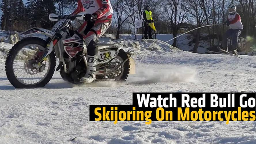 Watch Red Bull Go Skijoring The Best Way Possible